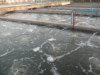 高浓度有机废水厌氧消化沼气能源利用